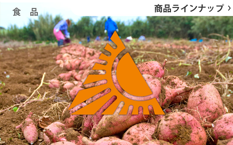 種子島特産品