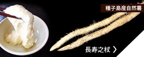 種子島産自然薯